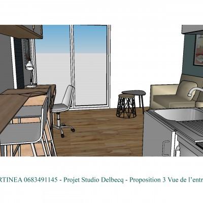 Conseil décoratrice Lyon Optimisation rénovation studio