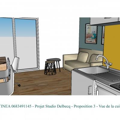 Conseil décoratrice d'intérieur Lyon Optimisation rénovation studio