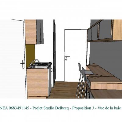 Conseil décoratrice d'intérieur Lyon Rénovation studio