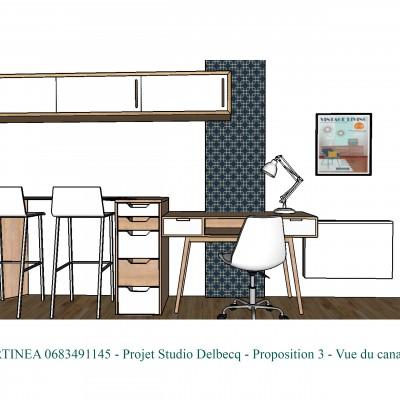 Conseil décoratrice d'intérieur optimisation rénovation studio Lyon