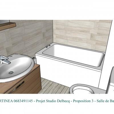 Conseil décoratrice d'intérieur Lyon optimisation aménagement Salle de bain studio