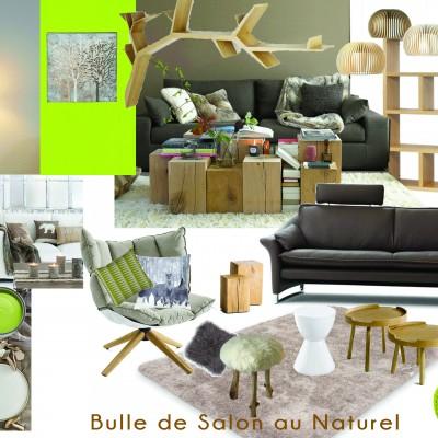 Aménagement Et Décoration Intérieure D'un Salon à Lyon Vertinea