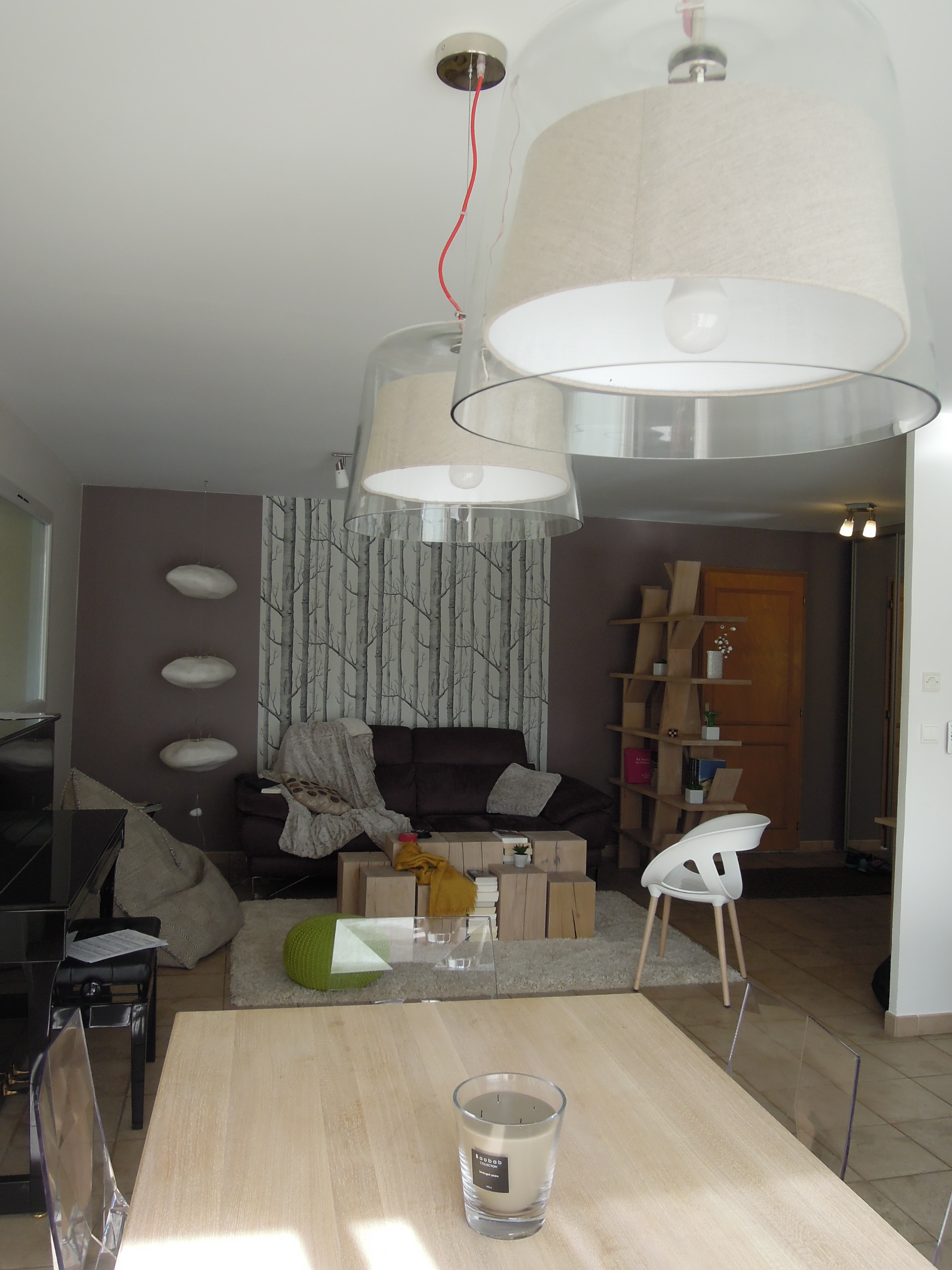 Am nagement et d coration int rieure d 39 un salon lyon for Amenagement decoration interieur