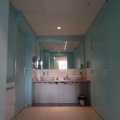 Rénovation intérieure Aménagement et décoration interieur espace toilettes salle des fêtes Lyon conseil décoratrice d'intérieur Lyon