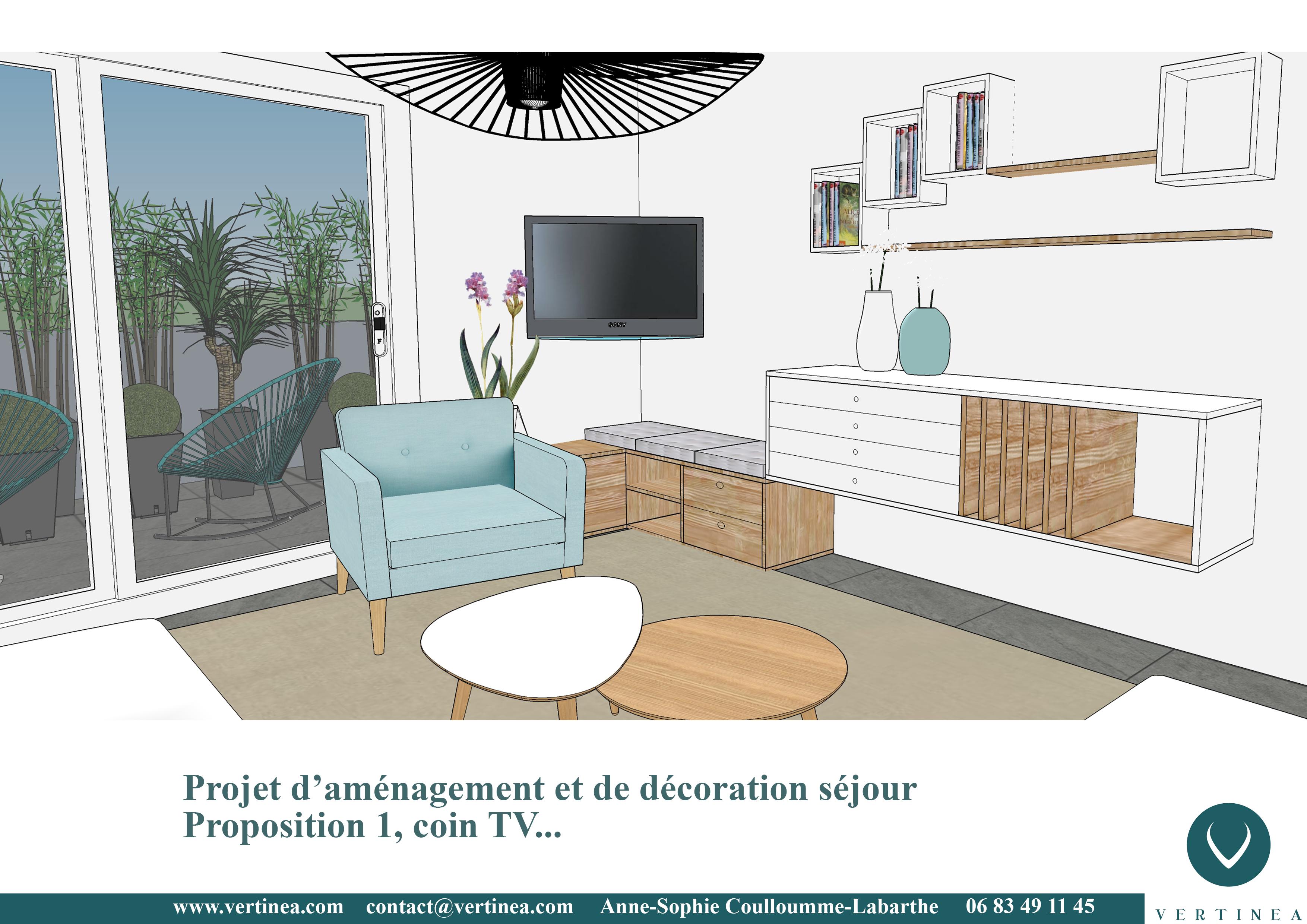 am nagement d 39 un appartement lyon 8 vertinea. Black Bedroom Furniture Sets. Home Design Ideas