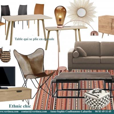 Décoration intérieure, aménagement, rénovation et suivi de chantier appartement Lyon 6 - Planche Salon ethnic chic
