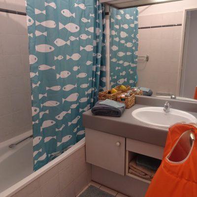 Décoration intérieure, aménagement, rénovation et suivi de chantier Lyon, appartement Lyon - Salle de bain