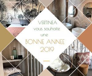 Vertinea, agence d'architecture intérieure Lyon, Caluire, Sainte-Foy lès Lyon, Ecully, Tassin la Demi-Lune, Saint Cyr au Mont d'Or, Saint Didier au Mont d'Or